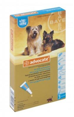 ADVOCATE MED DOG (3 X 1.0ML) 4-10kg TURQ