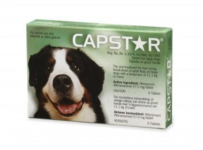 CAPSTAR DOG LARGE 6'S (GREEN) (57MG)