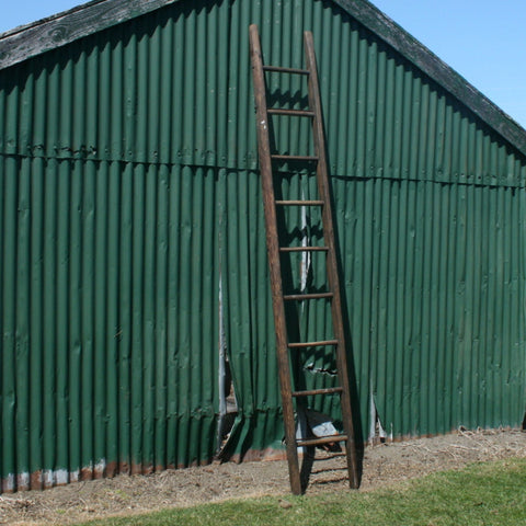Pine and Oak Fruit Picking Ladder
