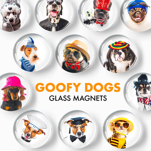 Funny Dogs Decorative Magnets - Cute Fridge Magnets - Decorative Magnets for Whiteboard - Small Round Magnets - 12 Pcs