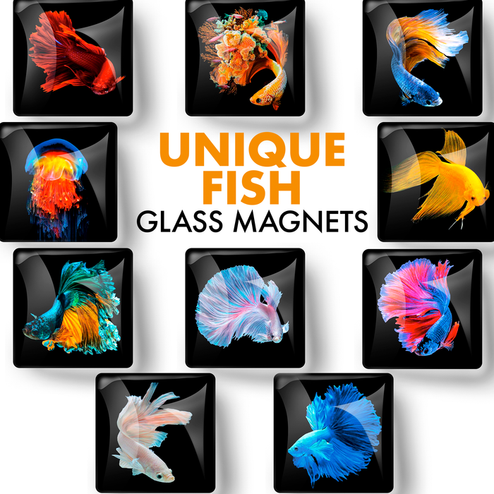 Unique Fish – Glass Refrigerator Magnets  10 PCs – Funny Fridge Magnets for Kitchen, Office and Whiteboard