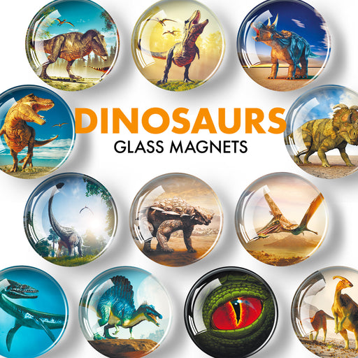 Decorative Magnets for Whiteboard and Fridge - Dinosaur Magnets - Funny Magnets for Rerfrigerator - Glass Magnets - 12 Pcs