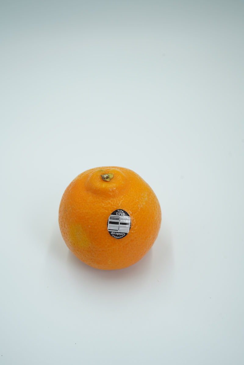 MINNEOLA ORANGE