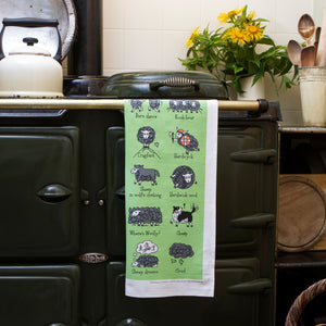 Herdwicks of the Lake District Tea Towel on an AGA