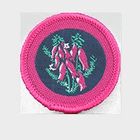 Patrol Emblem Pink Heath
