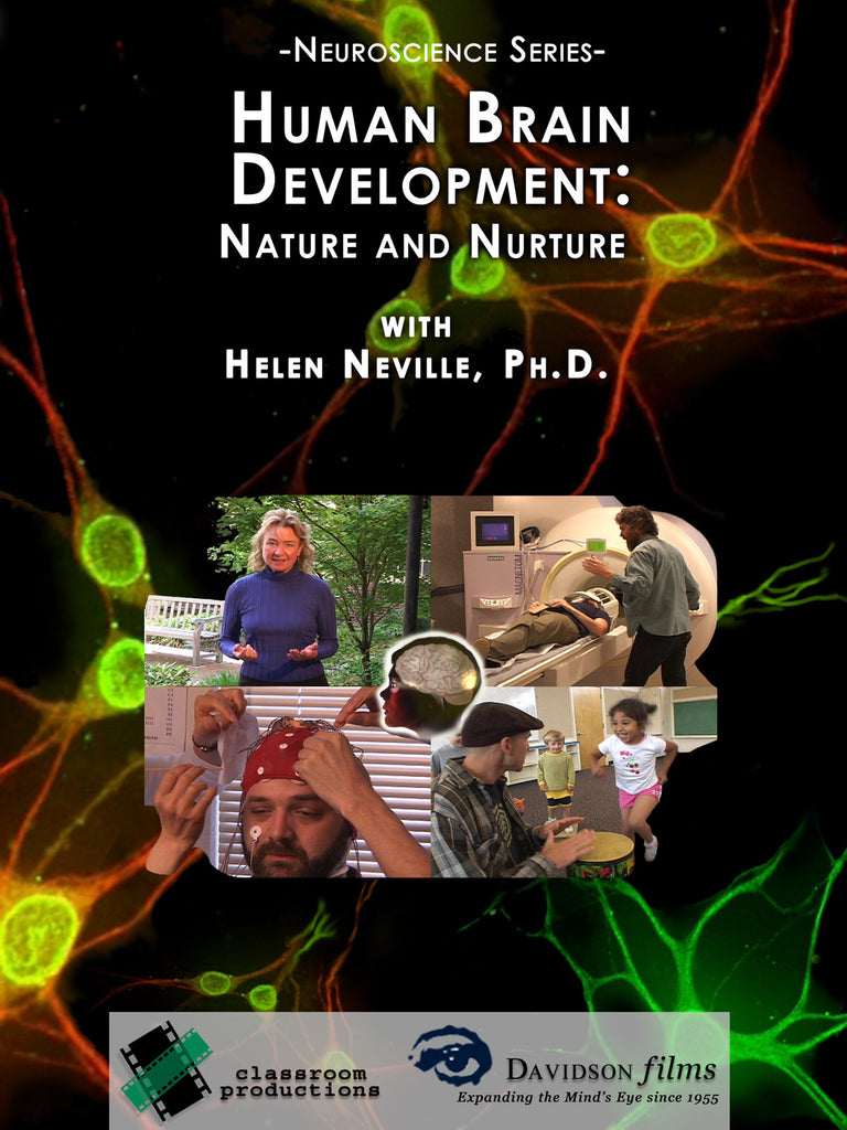 Human Brain Development: Nature and Nurture With Helen Neville, Ph.D.