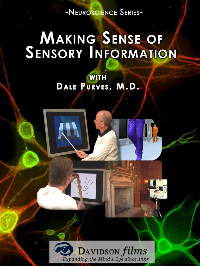Making Sense of Sensory Information With Dale Purves, Ph.D.