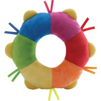 Color Fun Tambourine