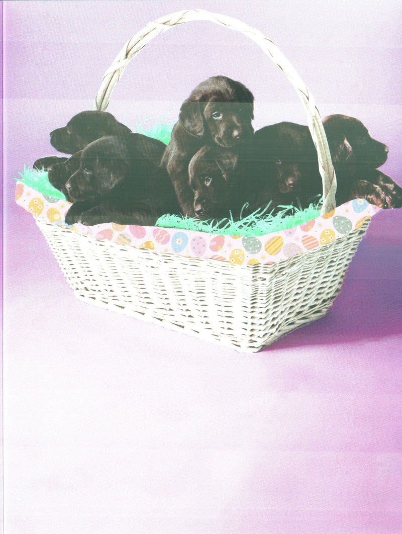Easter Card - Basket of Chocolates