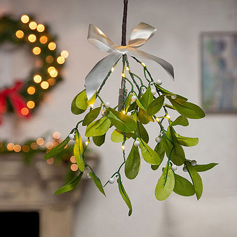 LED Mistletoe Branch