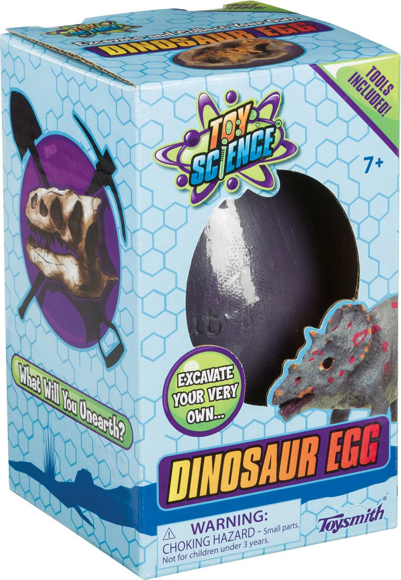 Excavation Discovery Dino Egg