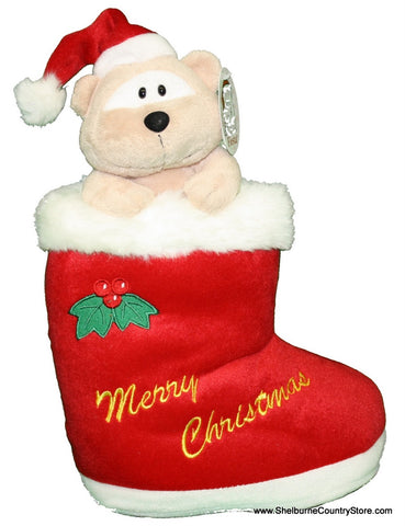 Animals In Santa Boot -