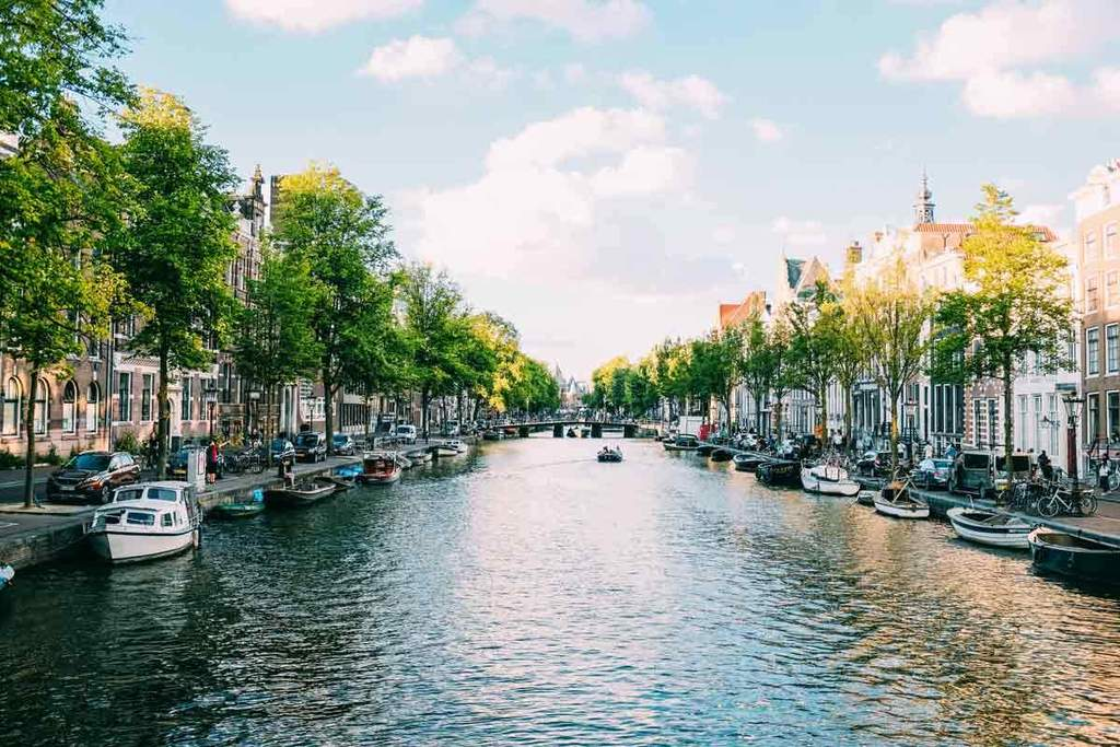 Amsterdam Guide by Ostrichpillow