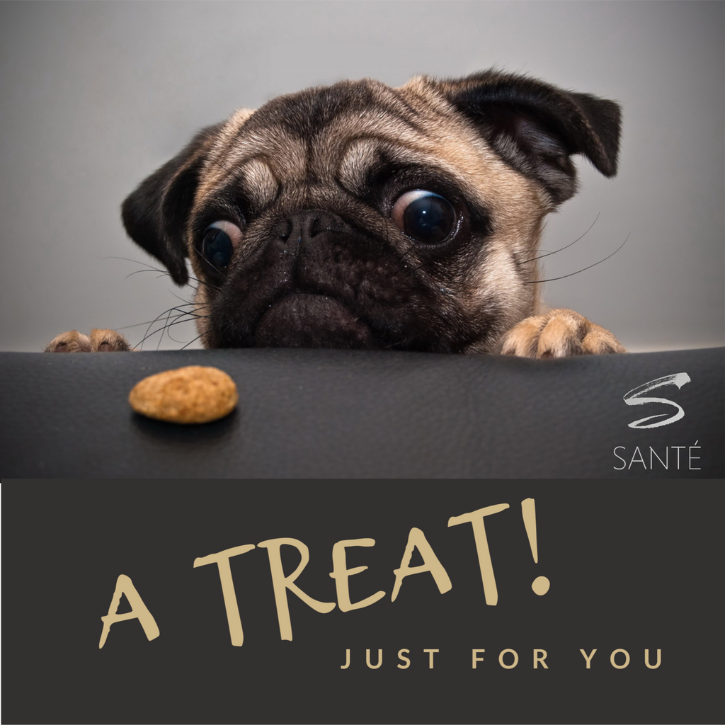 ART OF SANTÉ: Gift Cards