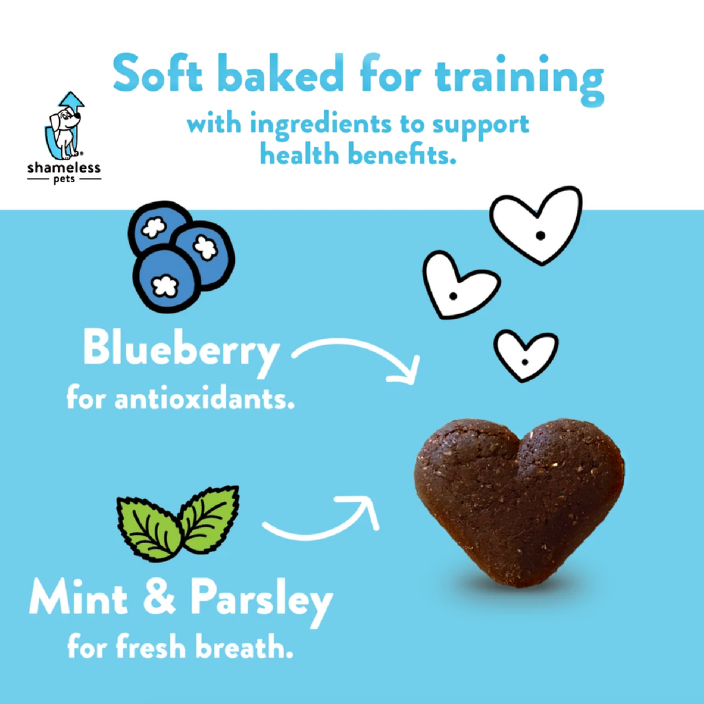 BLUEBERRIED TREASURE: Soft Baked Dog Treats