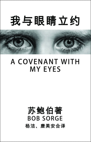 Chinese Translation ~ A Covenant With My Eyes eBook