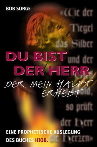 Pain, Perplexity and Promotion (German translation)