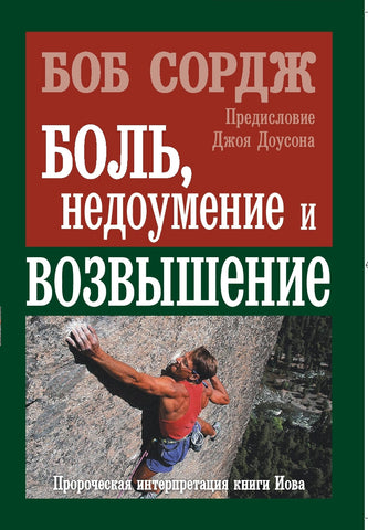 Pain, Perplexity and Promotion (Russian translation)
