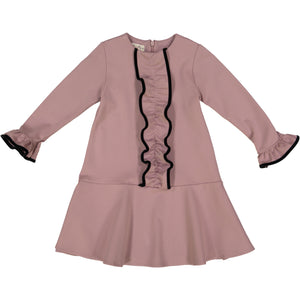 CLARA Drop Waist Ruffle Dress - Mauve - FINAL SALE - size 4 remaining