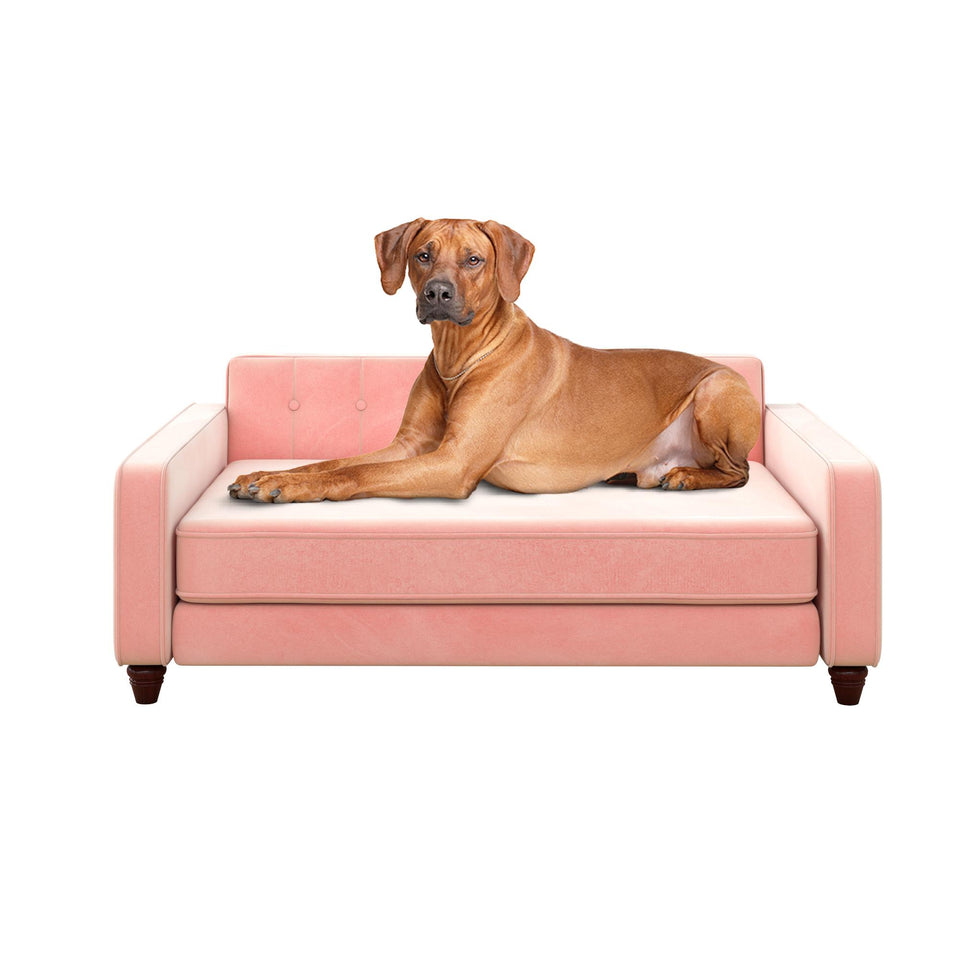 Pin Tufted Pet Sofa, Small/Medium Bed for Dog or Cat