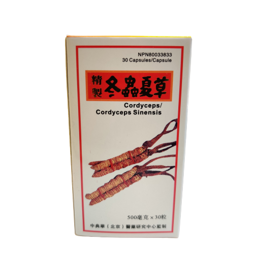 Cordyceps Sinensis | great-china-herbs-centre |