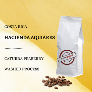 Costa Rica. Caturra peaberry. Washed process. Coffee.