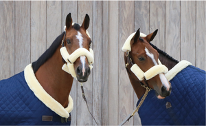 Head Collar Accessories