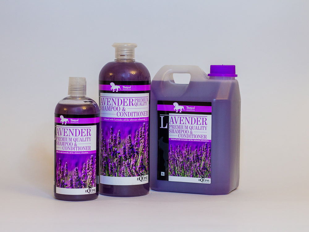 Lavender 2 in 1 Shampoo & Conditioner