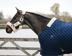 Kentucky Stable Rug 400g