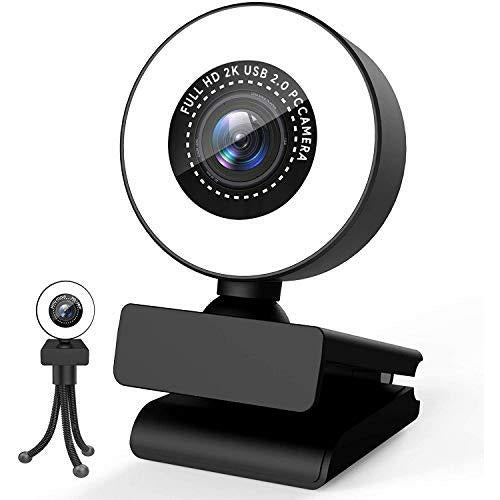Webcam for PC with Ring Light and Dual Microphone,1080P HD Web Cam Adjustable Brightness, Streaming Web Camera Compatible Xbox Gamer,PC Mac Laptop Desktop - Good