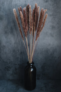 Dried Pampas Grass Bunch