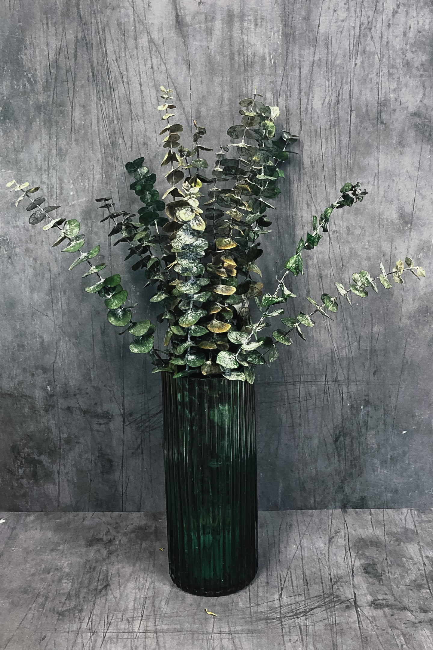 Preserved Eucalyptus Bunch - mini