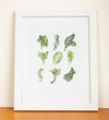 Bountiful Greens Watercolor Print