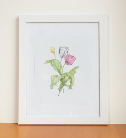 Tulips Watercolor Print