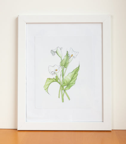 Calla Lily Watercolor Print