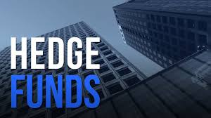 What Do Hedge Funds Actually Do? Introduction to Hedge Funds