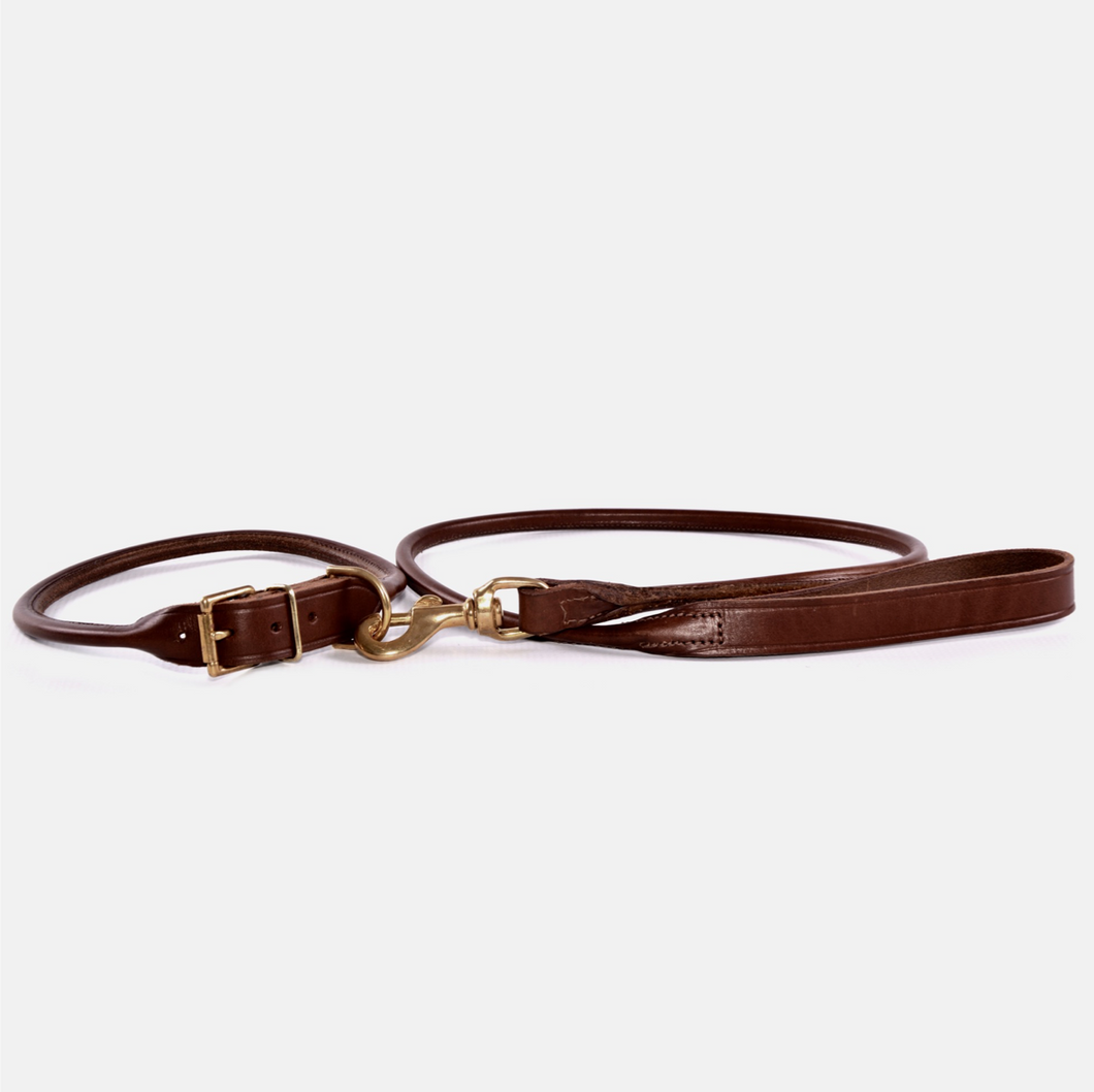 Brown leather dog collar attached to leather lead