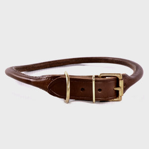 Brown leather dog collar with brass buckle