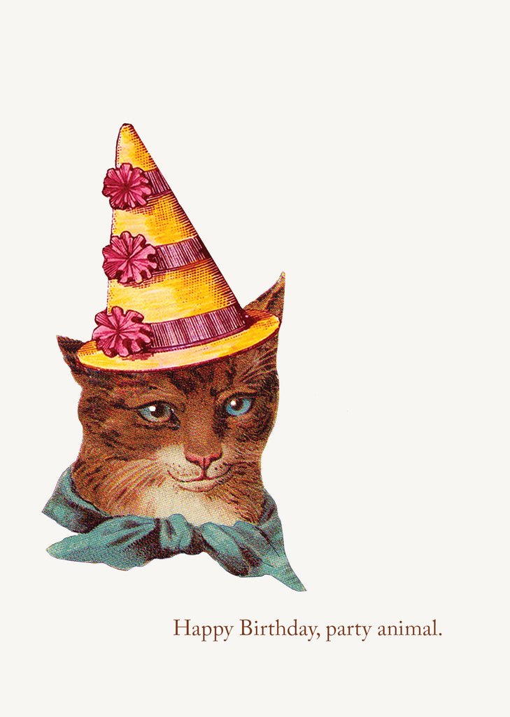 Party Animal Cat •  5x7 Greeting Card