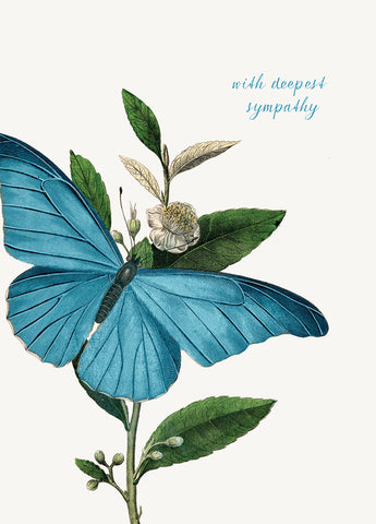 With Deepest Sympathy ( butterfly) • 5x7 Greeting Card