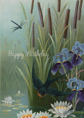 Happy Birthday (swallow) • 5x7 Greeting Card