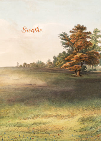 Breathe • 5x7 Greeting Card