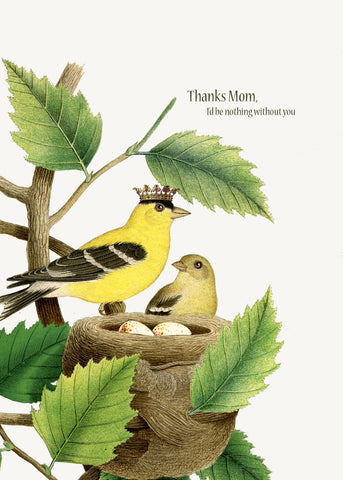 Thanks Mom • A-2 Greeting Card