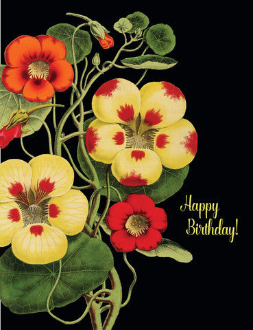 Happy Birthday Nasturtium • A-2 Greeting Card