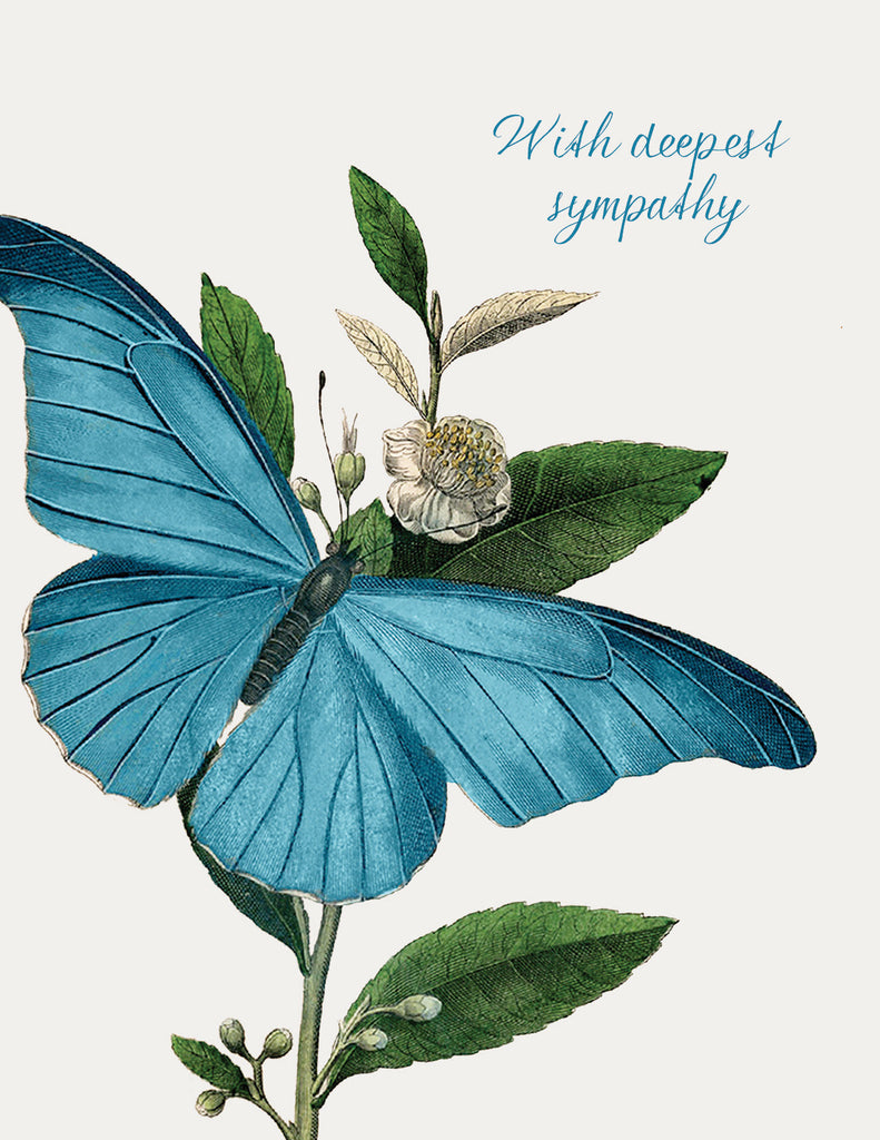With deepest sympathy ( butterfly)• A-2 Greeting Card