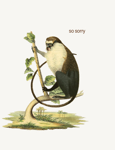 So sorry  A-2 Greeting Card