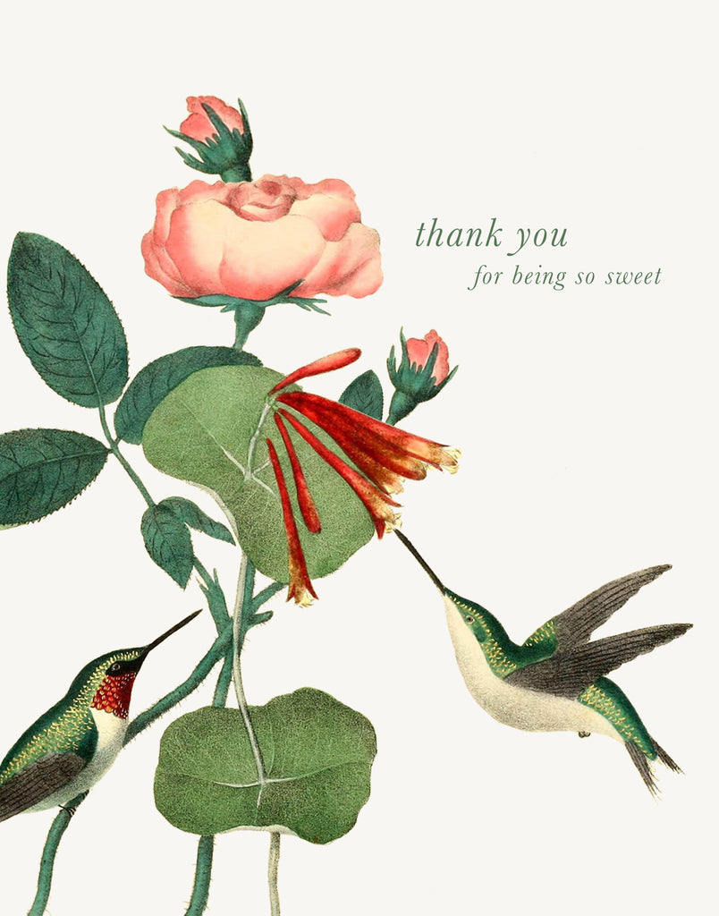 Thank You For Being So Sweet • A-2 Greeting Card
