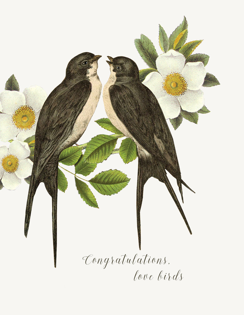 Congratulations love birds • A-2 Greeting Card