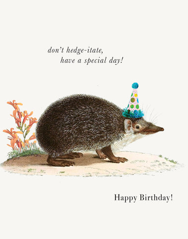 Don't Hedge-itate, Have a Special Day! • A-2 Greeting Card
