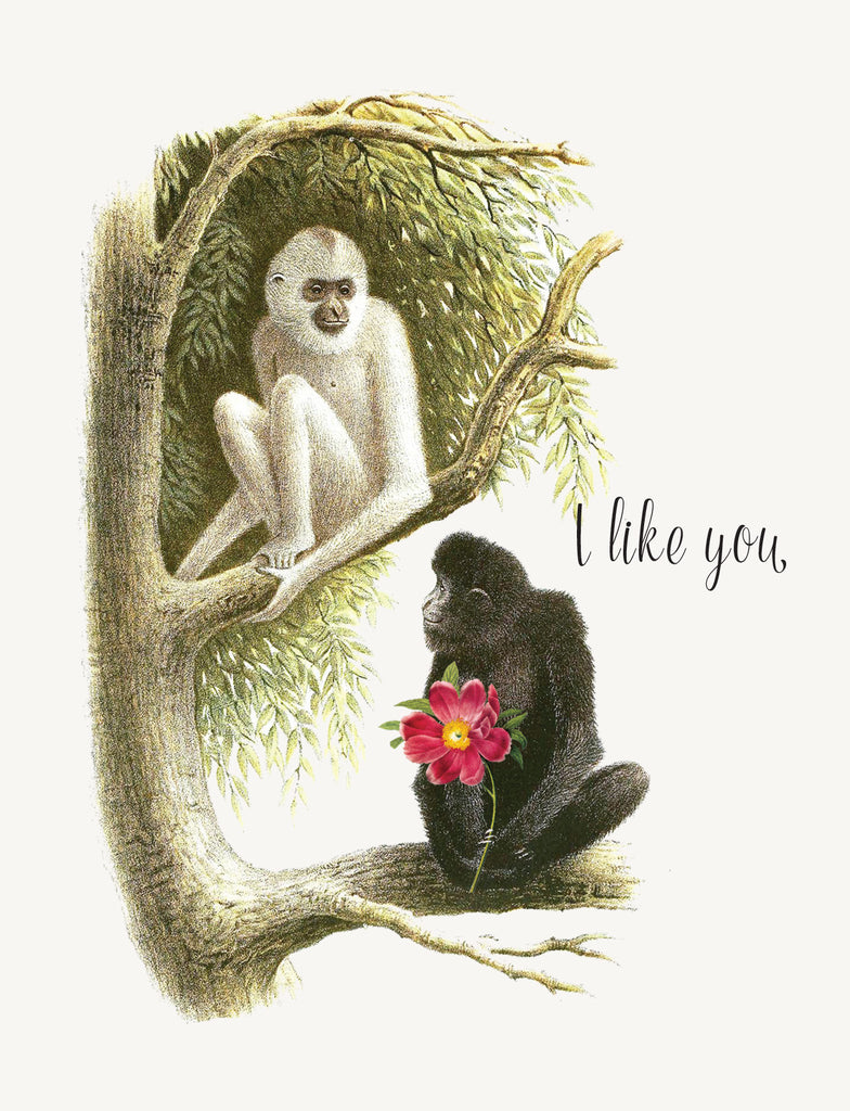 I like you  • A-2 Greeting Card